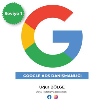 Google Adwords danışmanlığı Seviye1