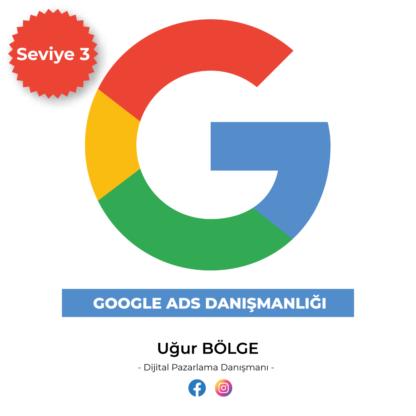 Google Adwords danışmanlığı Seviye3